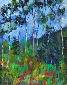 Aspen Forest   Acrylic Prints Available