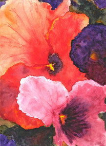 Pansy Colors  Watercolor Original/Prints Available